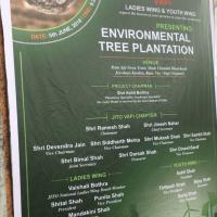 Environmental Tree Plantation